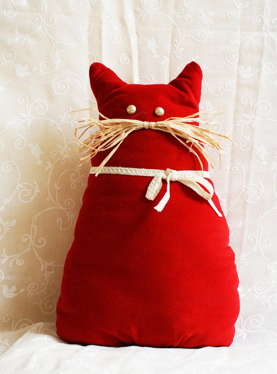 Gatto-Rosso-Associazione-Primo-Sole
